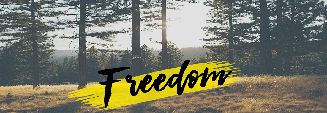 freedom-blog-header